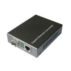 Dual Port Media Converter