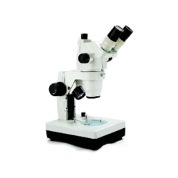 Multimagnification Stereo Zoom Microscope (Configuration Choices)