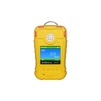 Gas Detector for Hydrogen Sulfide (Storage, High Accuracy)