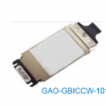 GAO-GBICCW-101