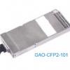 GAO-CFP2-101
