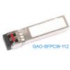 GAO-SFPCW-112