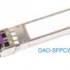 GAO-SFPCW-117